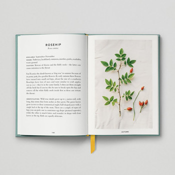 The Urban Forager Book Rosehip by Hoxton Mini Press at Of Cabbages and Kings