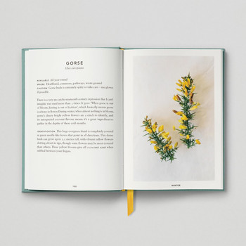 The Urban Forager Book recipe by Hoxton Mini Press at Of Cabbages and Kings