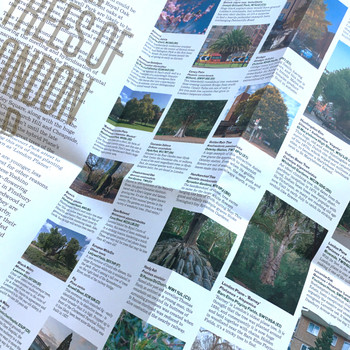 Great Trees of London Map inside by Blue Crow Media at Of Cabbages and Kings.