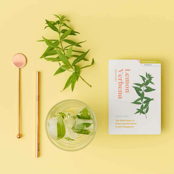 Herb Care Cards open 02 by Another Studio at Of Cabbages & Kings
