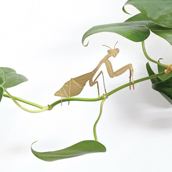 Praying Mantis Plant Ornament on plant 01 by Another Studio at Of Cabbages and Kings
