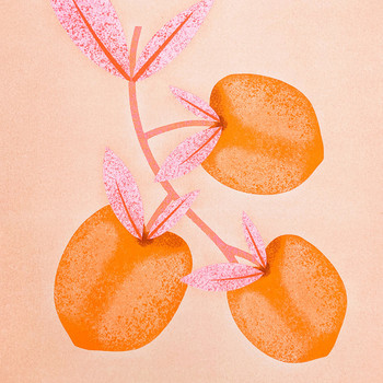 Botanical Peaches detail 01 by Melissa Donne Studio at Of Cabbages and Kings