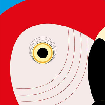 Scarlet Macaw Art Print detail by Julio Guerra at Of Cabbages and Kings