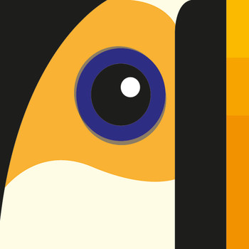 Toco Toucan Art Print detail 01 by Julio Guerra at Of Cabbages and Kings