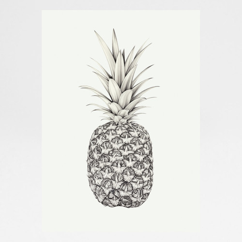 Papillion Pineapple art print by Lauren Mortimer at Of Cabbages and Kings
