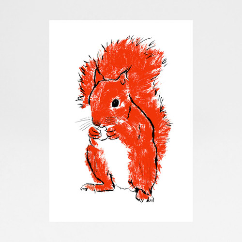 Kevin the Squirrel screen print by Tiff Howick at Of Cabbages and Kings