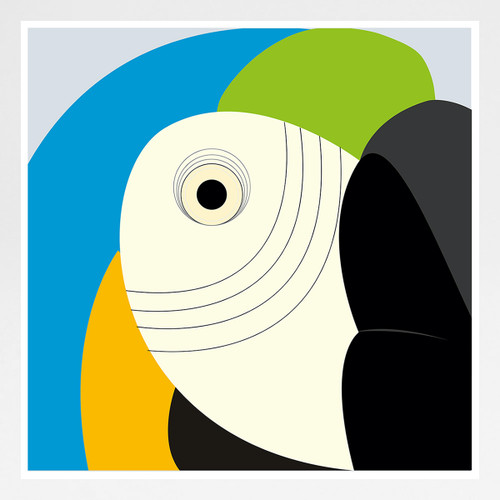 Blue and Golden Macaw art print by Julio Guerra at Of Cabbages and Kings