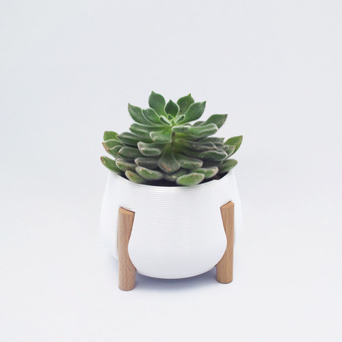 Short White Legged Planter by Studio Nilli at Of Cabbages and Kings