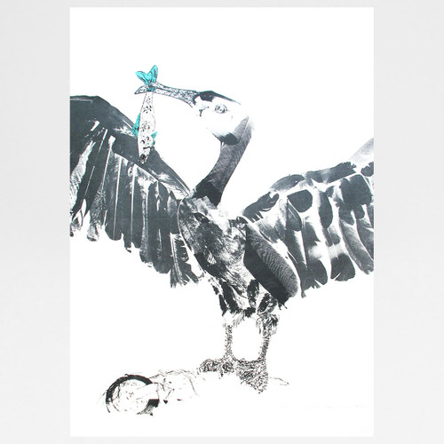Cormorant and Fish screen print by Factory Press at Of Cabbages and Kings