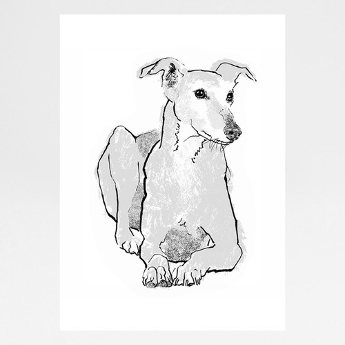 Greyhound screen print by Tiff Howick at Of Cabbages and Kings
