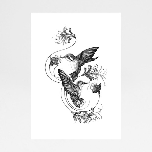 Hummingbirds and Honeysuckle art print by Emily Carter at Of Cabbages and Kings