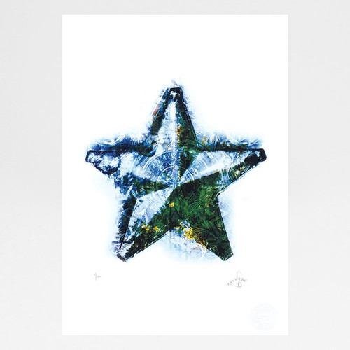 Morning Star screen print by Fiftyseven Design available at Of Cabbages and Kings.