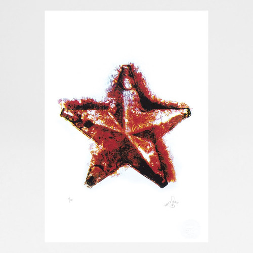 Evening Star screen print by Fiftyseven Design available at Of Cabbages and Kings.