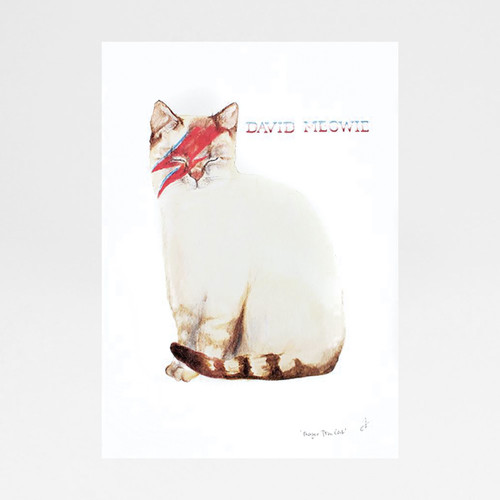 David Meowie print by Mister Peebles at Of Cabbages and Kings.