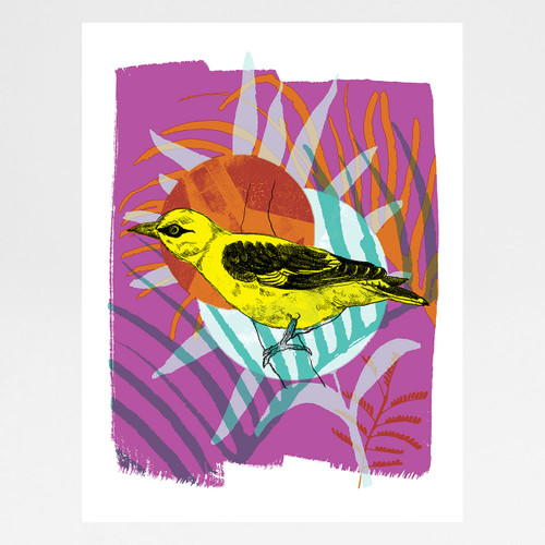 Golden Oriole screen print by Melissa North at Of Cabbages and Kings