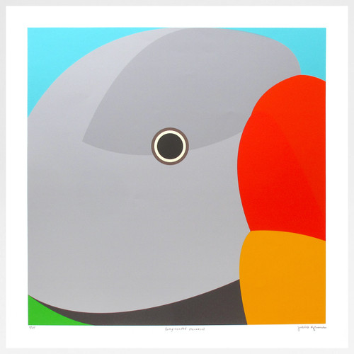 Grey Haired Parakeet Art Print by Julio Guerra at Of Cabbages and Kings