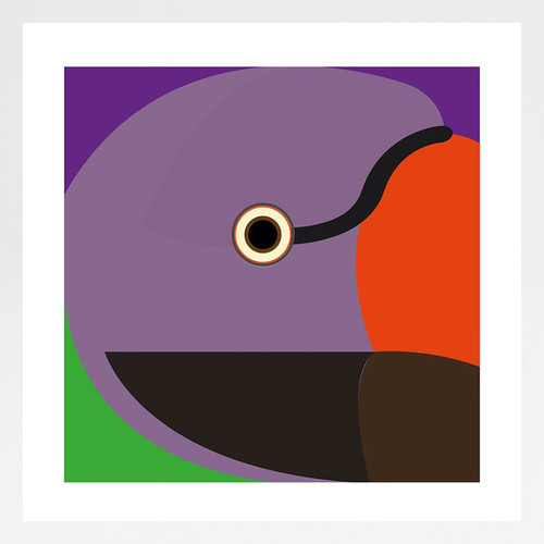 Moustached Parakeet Art Print by Julio Guerra at Of Cabbages and Kings