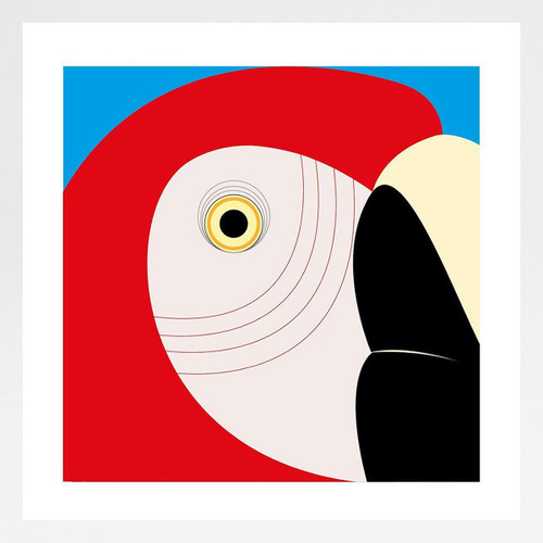 Scarlet Macaw Art Print by Julio Guerra at Of Cabbages and Kings