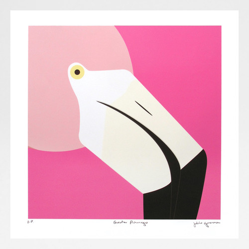 Greater Flamingo Art Print by Julio Guerra at Of Cabbages and Kings