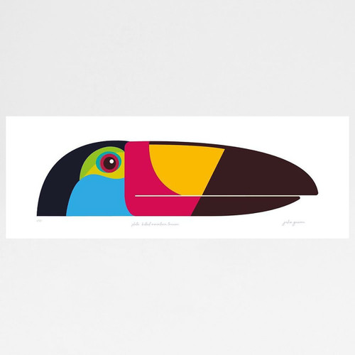 Plate-Billed Mountain Toucan Art Print by Julio Guerra at Of Cabbages and Kings