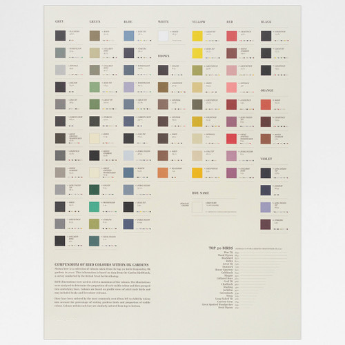 Bird Colours print by Ploterre at Of Cabbages and Kings