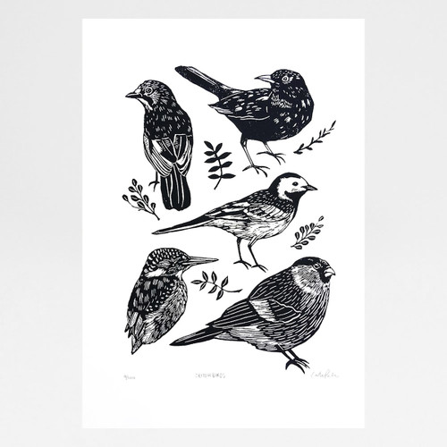 British Birds screen print by Caitlin Parks at Of Cabbages and Kings