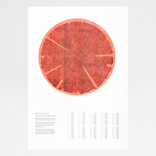 Tree Rings (Hot) risograph print by Ploterre at Of Cabbages and Kings