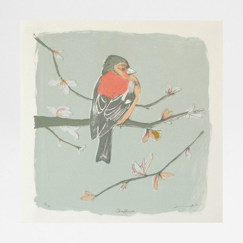 Chaffinch screen print by Freya Cumming at Of Cabbages and Kings
