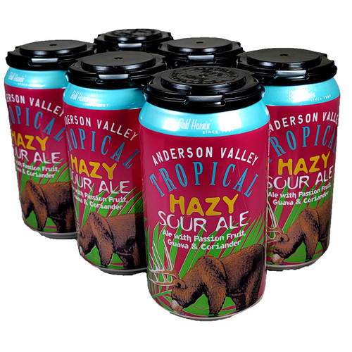 Anderson Valley Tropical Hazy Sour Ale 6-Pack Can