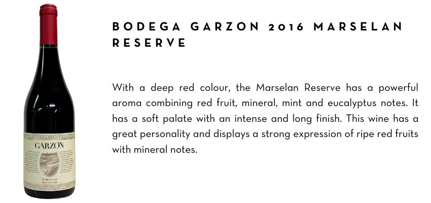 2-bodega-garzon-2016-marselan-reserve.png