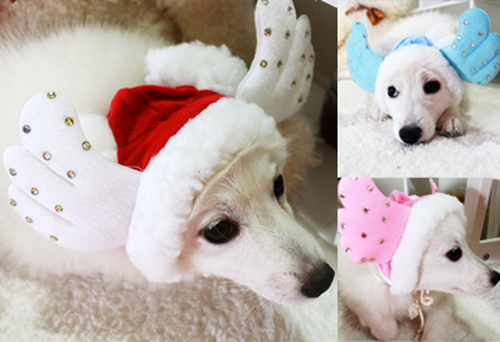 Cutie Angel Winter Hat
