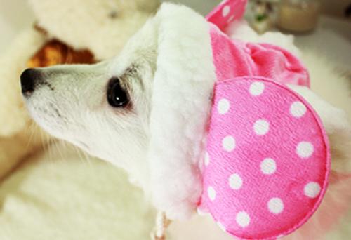 Cutie Mouse Winter Hat