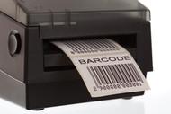 Top-Selling Thermal Transfer CS1 Paper Tags