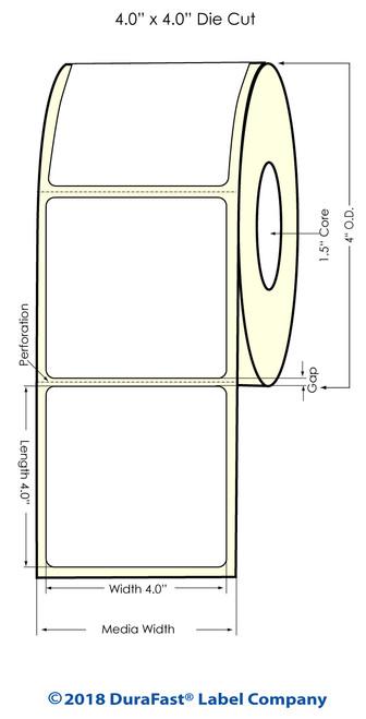 "TM-C3500 4"" x 4"" (1A) Matte Paper Inkjet Labels 290/Roll"