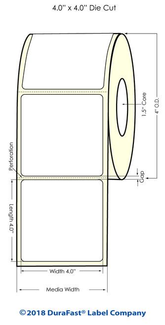 "TM-C3500 4"" x 4"" (1A) High Gloss Paper Inkjet Labels 290/Roll"