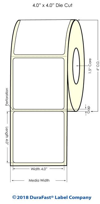 """TM-C3500 4"""" x 4"""" (1A) Matte BOPP Inkjet Labels 290/Roll"""