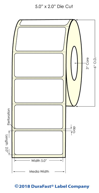 "LX900 5"" x 2"" NP High Gloss Paper Inkjet Labels 1100/Roll (931020)"