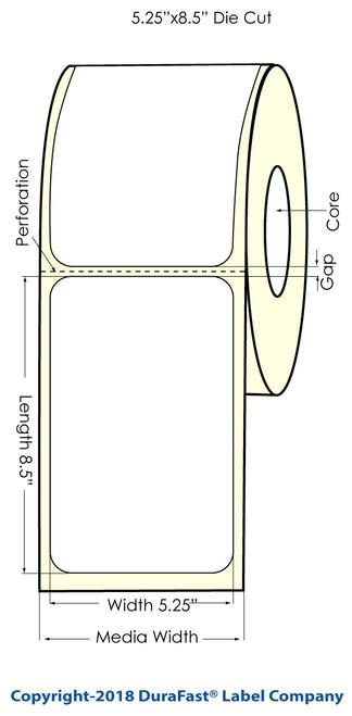 "LX900 5.25"" x 8.5"" Glossy BOPP Inkjet Labels 300/Roll (934031)"