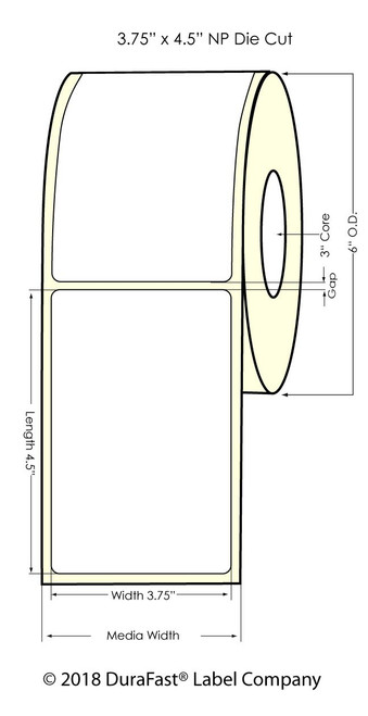 """TM-C7500G 3"""" Circle Silver Polyester Inkjet Labels 800/Roll (937015)"""