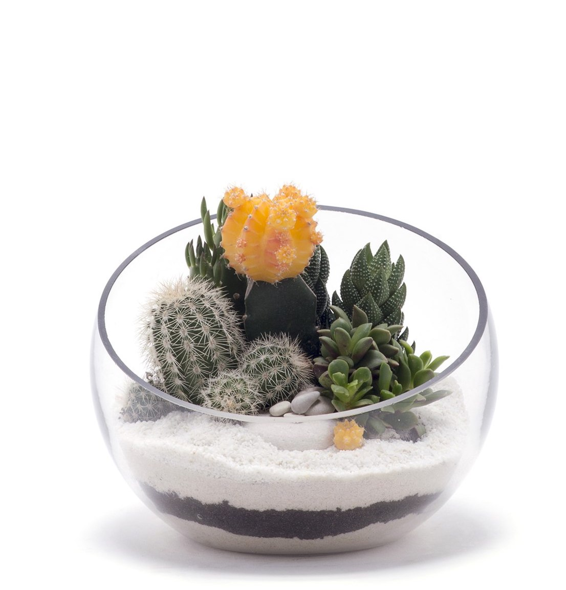 Half Moon Small White Terrarium