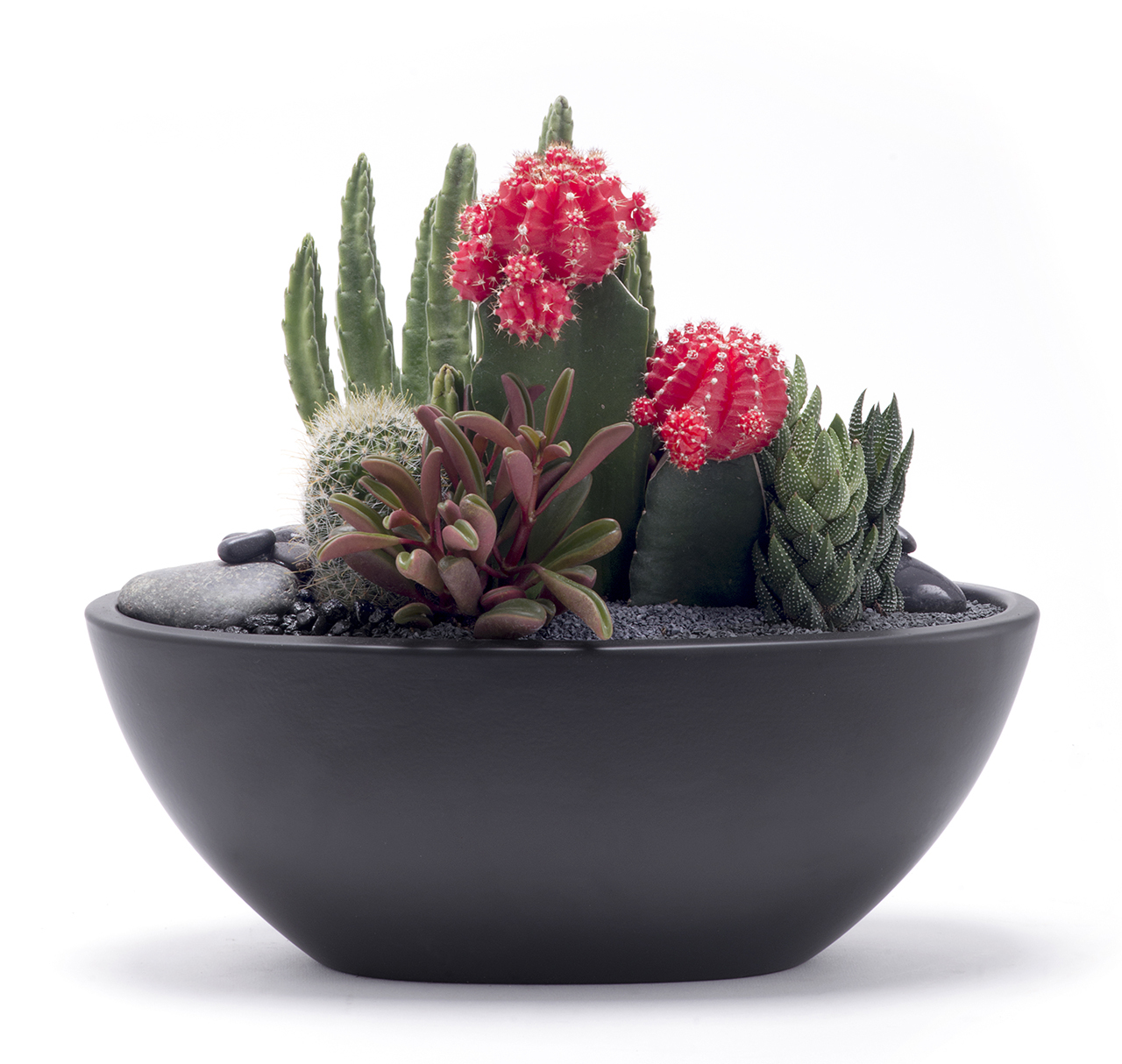 "Germany Boat Small Black - Garden (15"" H x 11.75"" W)"