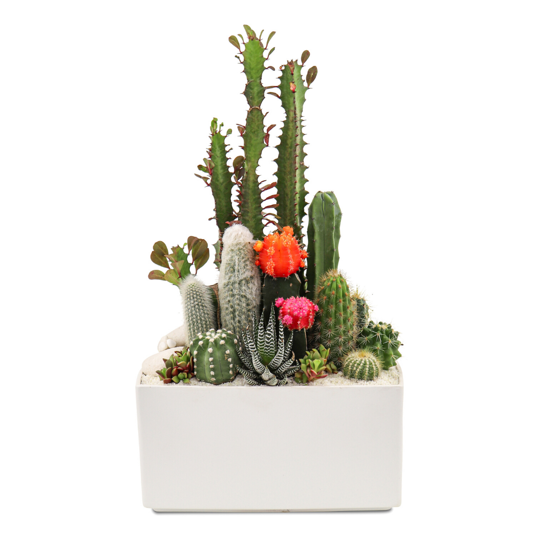 "Germany Rectangle Small White - Garden (15"" H x 9.5"" W)"