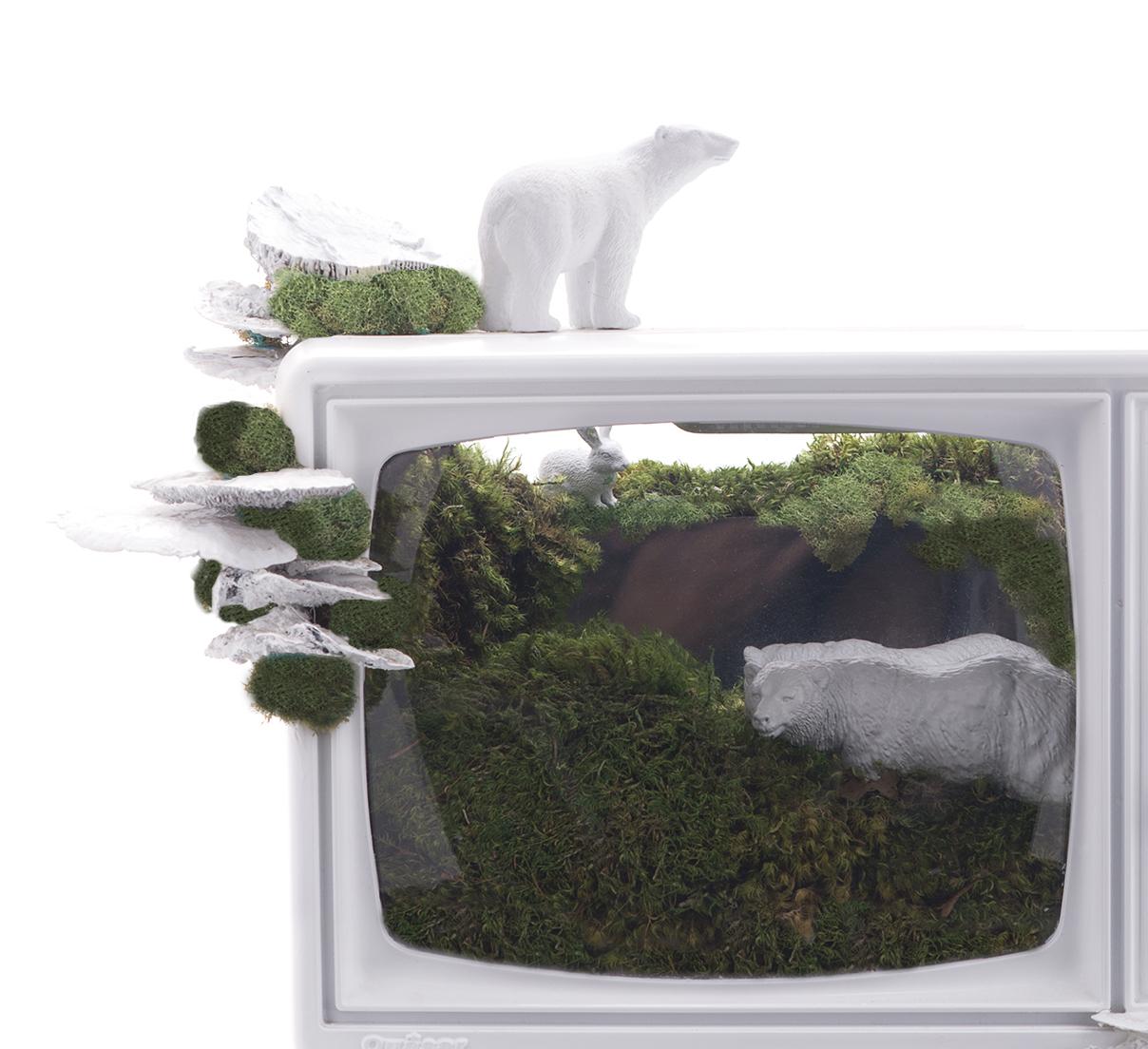 Good News TV  Garden