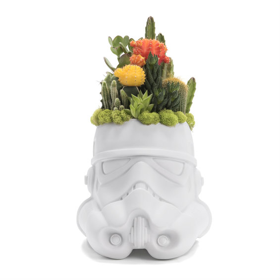 Planter shaped like a stormtrooper with a cacti succulent garden