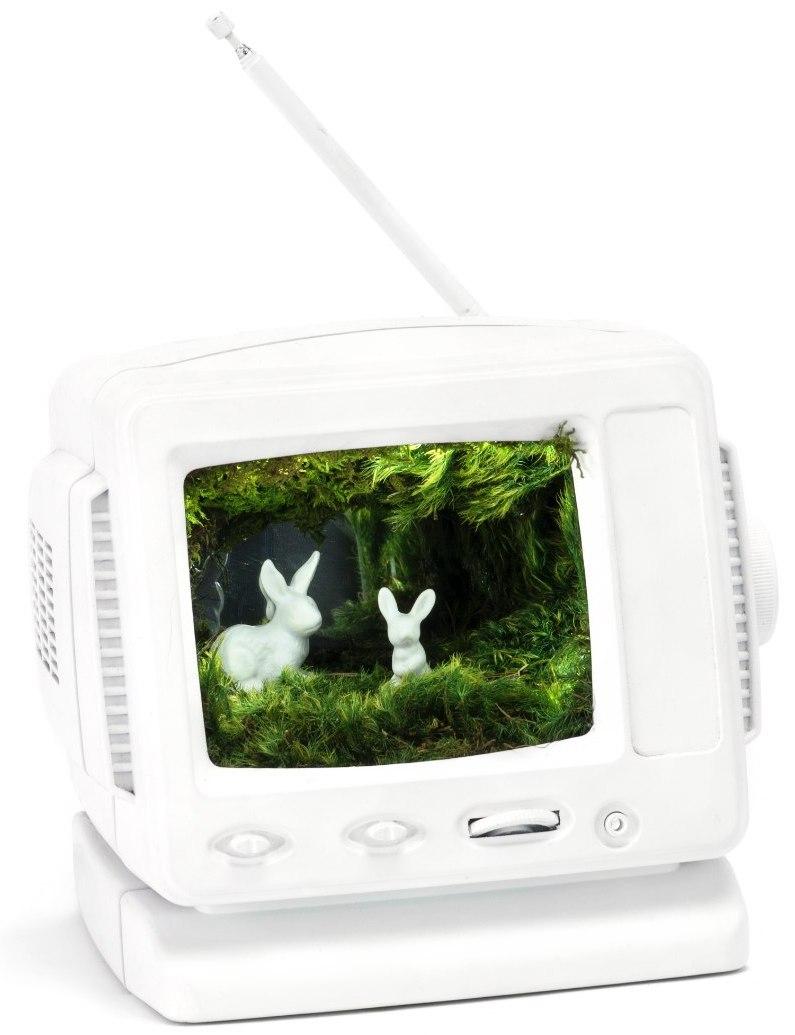 Bunny Vision