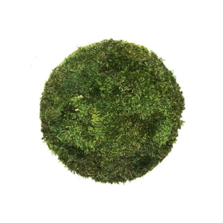 """Moss Circle Small (13"""" H x 13"""" W)"""