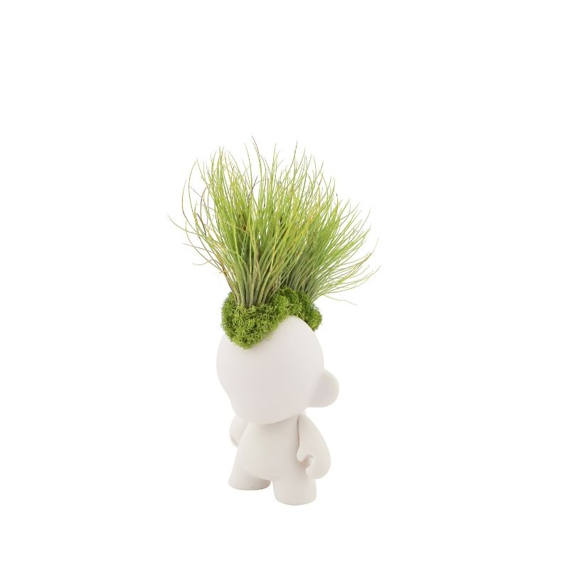 "Munny Mini Mohawk - Andreana Airplants (5"" H x 3"" W)"