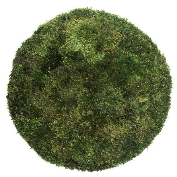 """Moss Circle Large (29"""" H x 12"""" W)"""