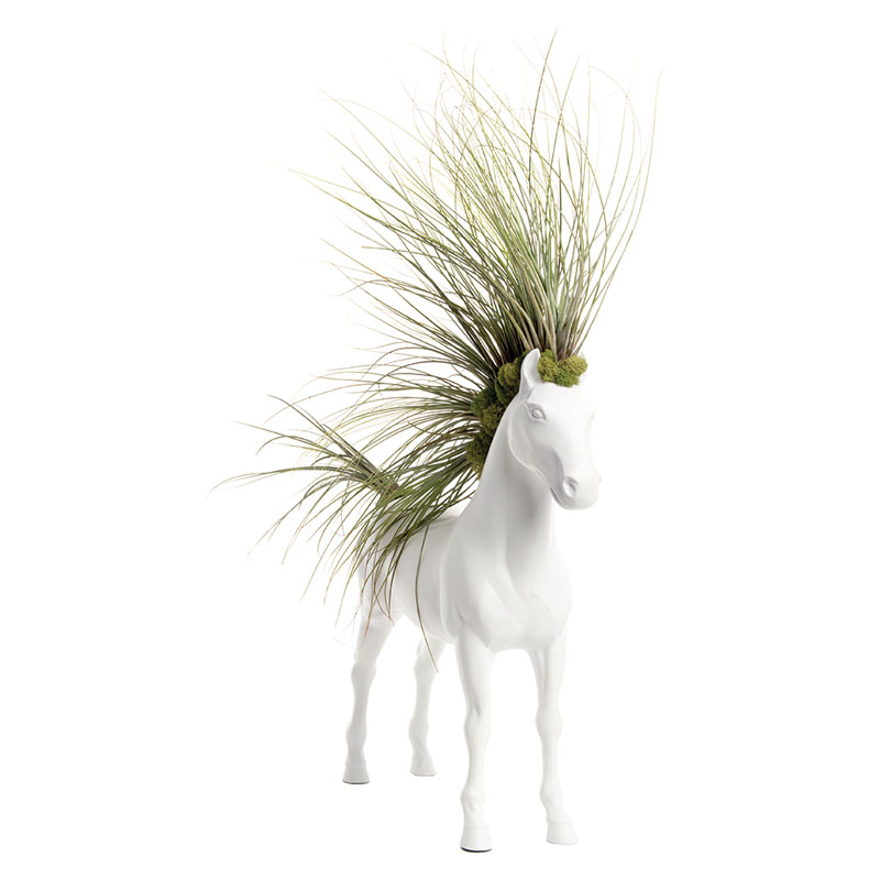 """Horse Large Standing - Juncea Airplants (30"""" H x 20"""" W)"""