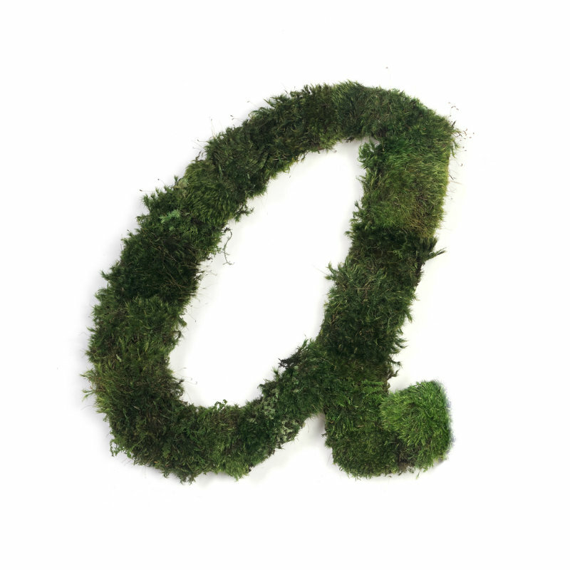 """Moss Sign - By Letter - Cursive H12"""""""